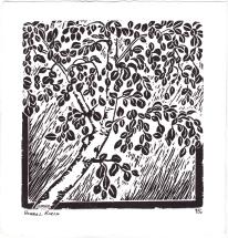 Boreal Birch, Linocut print by Leslie Leong, Canadian Artist, Whitehorse, Yukon