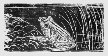 Frog Prince on a pond, Woodblock Relief print by Leslie Leong, Canadian Artist, Whitehorse, Yukon