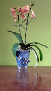 ceramic sculptural pod vase for orchid plants handmade by Leslie Leong, Canadian Artist, Whitehorse, Yukon.
